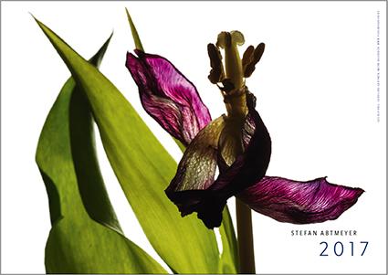 deckblatt-2017